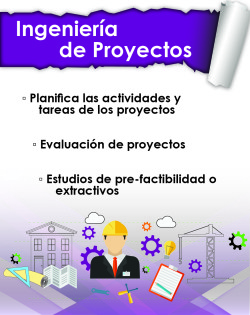 05 ingenieria de proyectos