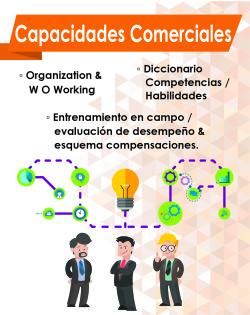 06 capacidades comerciales