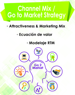 06 channel mix go to market estrategy